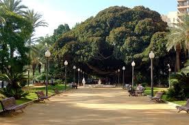 Canalejas Park In Alicante Canalejas Park In Alicante