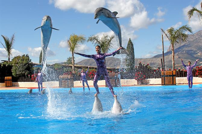 4 Top 10 Theme Parks In Alicante