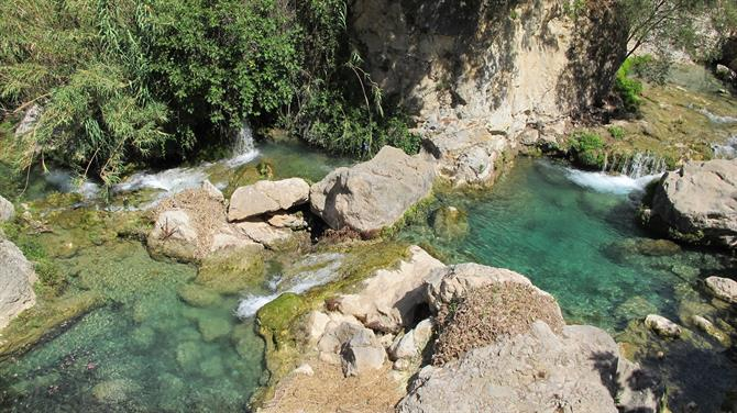 plants Visit Alicante's most beautiful waterfall