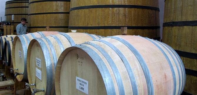 Sax Wine tours around Alicante