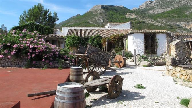 wines Wine tours around Alicante